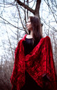 Free Woman In Black Dress With Red Fabric In Cold Dark Forest Stock Images - 35889624