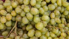Grapes From The Local Garden Of Thailand Stock Photography