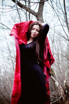 Free Woman In Black Dress With Red Fabric In Cold Dark Forest Royalty Free Stock Photo - 35889635