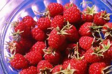Free Raspberry Stock Photos - 3590323