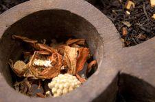 Dried Tea Royalty Free Stock Image