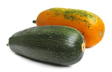 Free Squashes Stock Images - 3591754