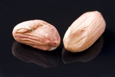 Free Two Shelled Nuts Stock Photos - 3592203