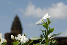 Free Bakong, Angkor, Cambodia Stock Photo - 3596190