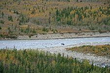 Free Alaskan Stream Royalty Free Stock Photography - 3596977