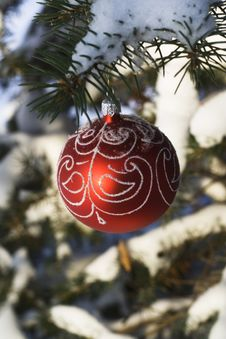 Free Christmas Tree Decoration 9 Royalty Free Stock Images - 3597989