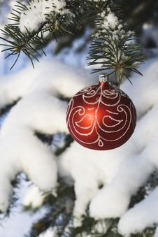 Free Christmas Tree Decoration 10 Stock Images - 3597994