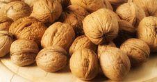Free Walnuts Royalty Free Stock Photo - 3599355