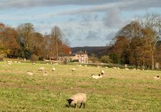 English Country Landscape Stock Photography