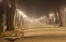Free Misty Night In The Park Royalty Free Stock Images - 35905569