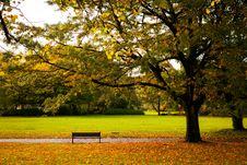 Free Empty Bench Stock Images - 35907304