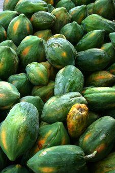 Free Unfresh Papaya Royalty Free Stock Photography - 35910017