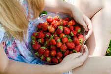 Free Closeup On Young Woman Holding Strawberry Bowl Stock Images - 35919904