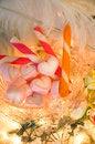 Free Pink Heart Marshmallow Stock Image - 35923091