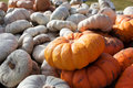 Free Gourds In Farm Wagon Royalty Free Stock Photography - 35929617