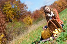 Free Happy Beautiful Young Woman With Basket Of Fresh Apples Stock Photography - 35921612