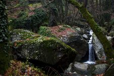 Free Waterfall In The Woods Royalty Free Stock Photography - 35926997
