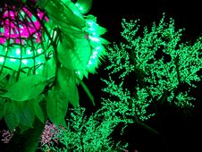 Free LED Tree Stock Photography - 35939772