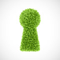 Free Green Leaves Keyhole Stock Photos - 35942933