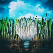Free Llight Bulb Stock Photos - 35940033