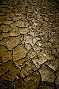 Free Mud Texture Stock Images - 35940594