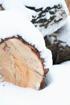 Free Timber In Snow Royalty Free Stock Images - 35943679
