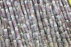 Free Chinese Bamboo In Detail; Bamboo Is Very Strong And Is Used To Fabricate Furniture, Rafts, Floors And Scaffoldings Stock Photo - 35945400