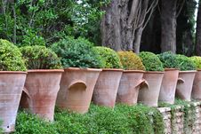Free Row Of Clay Pots Royalty Free Stock Images - 35949239