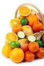 Free Mixed Citrus Fruit In Wicker Basket Stock Photo - 35953860