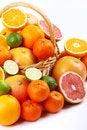 Free Mixed Citrus Stock Photo - 35954130