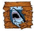 Free Shark Attack Royalty Free Stock Image - 35964496