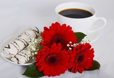 Free Cup Of Coffee, Cookies And Flowers Stock Image - 35962211