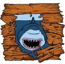 Shark Attack Royalty Free Stock Photography