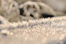 Free Closeup On Frost Royalty Free Stock Image - 35969666