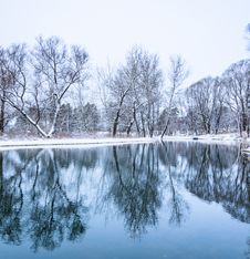 Not Frozen Pond In Winter Royalty Free Stock Images