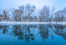 Not Frozen Pond In Winter Stock Image