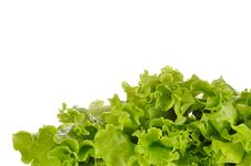 Free Green Salad Isolated On A White Stock Image - 35971411