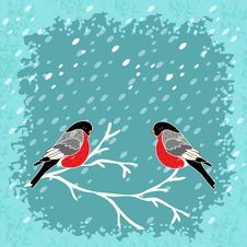Free Vector Winter Background With Bullfinch Bird Royalty Free Stock Photography - 35972847