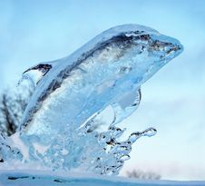 Free Ice Dolphin Stock Photo - 35980350