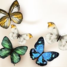 Free Fashion Vector Background With Butterflies Stock Photo - 35981870