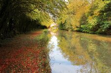 Free Autumn On The Grand Union Canal At Yelvertoft Cover, Northamptonshire Royalty Free Stock Photos - 35982508