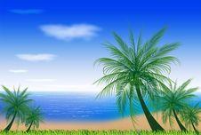 Free BEACH WITH COCONUT TREES Stock Photos - 35984183