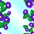 Free Seamless Pattern With Floral Patterns. Vertical. ( Royalty Free Stock Photos - 35991768