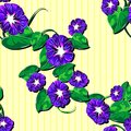 Free Seamless Pattern With Floral Patterns. Diagonal. ( Royalty Free Stock Image - 35991796