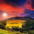 Free Forest On A Steep Mountain Slope Royalty Free Stock Photo - 35994805