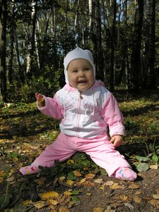 Free Baby On Stump Stock Images - 360714