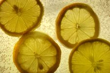 Free Lemon Slices Royalty Free Stock Image - 366546