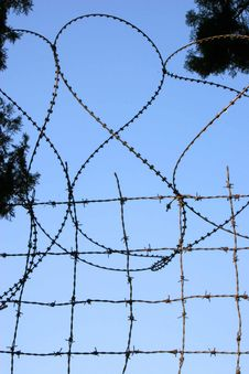 Free Barbed Wire Royalty Free Stock Images - 368809