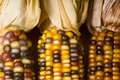 Free Indian Corn Stock Images - 3602684