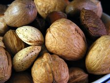 Mixed Nuts 1 Stock Image